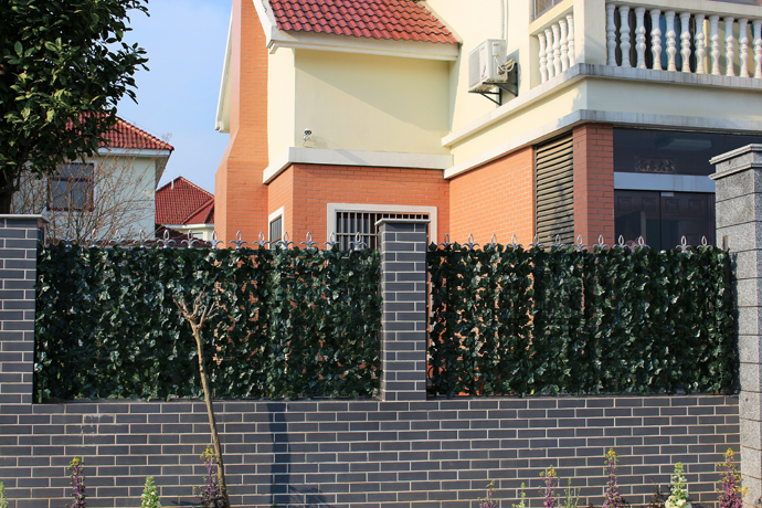 What Can I Plant Along My Fences for Privacy?