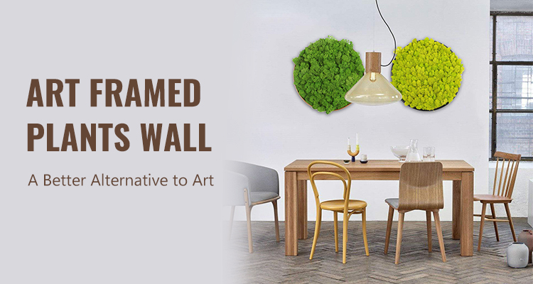 Art Framed Plants Wall: A Better Alternative to Art
