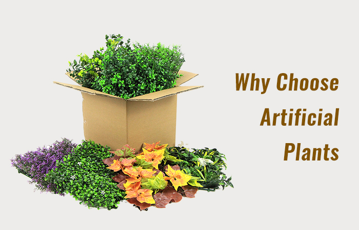 Why Choose Artificial Plants