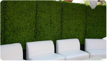 PROJECTS-artificial hedges for privacy screen